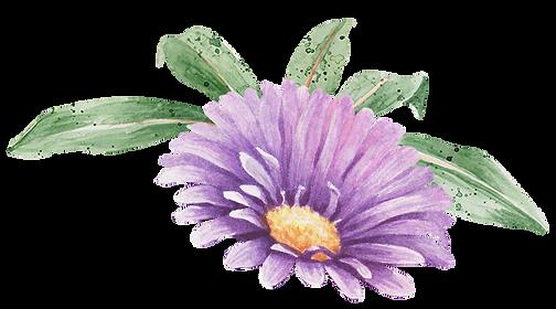 Fleur pourpre avec feuilles