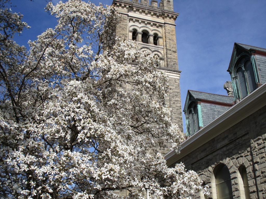 NEWS & EVENTS | Worship | First Presbyterian Church of Ithaca, NY