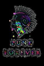 punk_rock.png