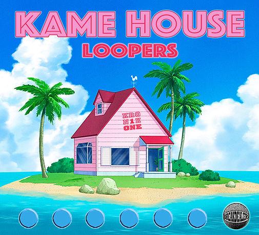 KAME HOUSE LOOPERS.jpg