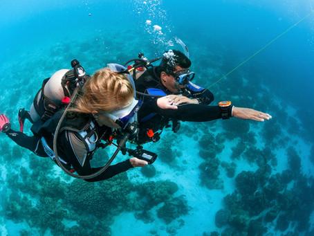 L'Advanced Open Water, la prochaine étape pour devenir un meilleur plongeur !