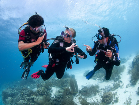 The first-time Scuba debate: PADI Open water or DSD?