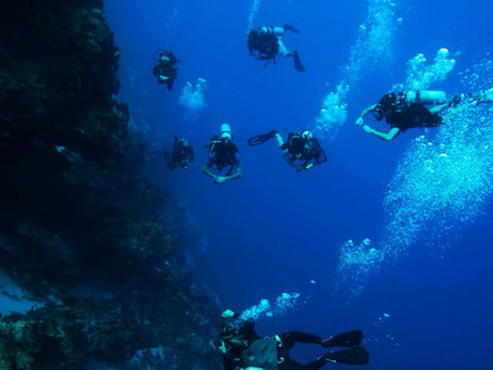 'Cozumel Direct' with Manta - don't miss out!