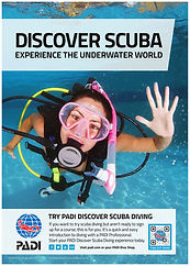 Discover Scuba | Wet Set Diving Adventures