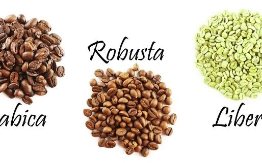 Классификация кофе и основные термины