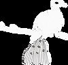 иконка Jacu Bird квадрат.png