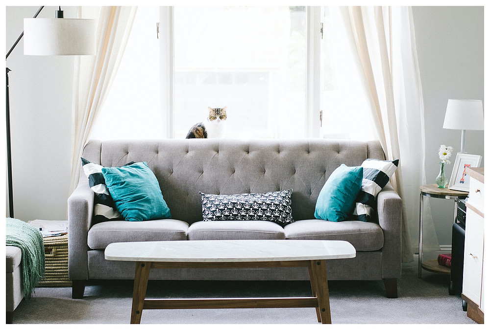 A soft, grey upholstered couch sits in front of a large window. There are turquoise and striped pillows on it, and sheer white curtains are pulled back on either side of the couch. Light is pouring into the room.