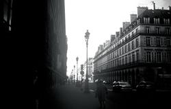 Banbeaute | the metropolis of beauty