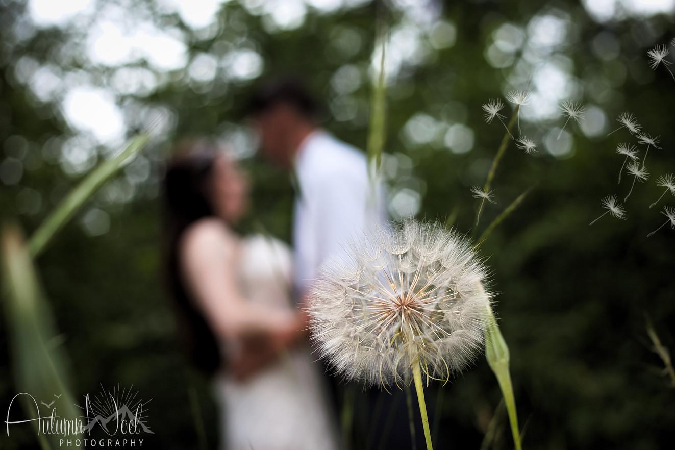 wedding day wish