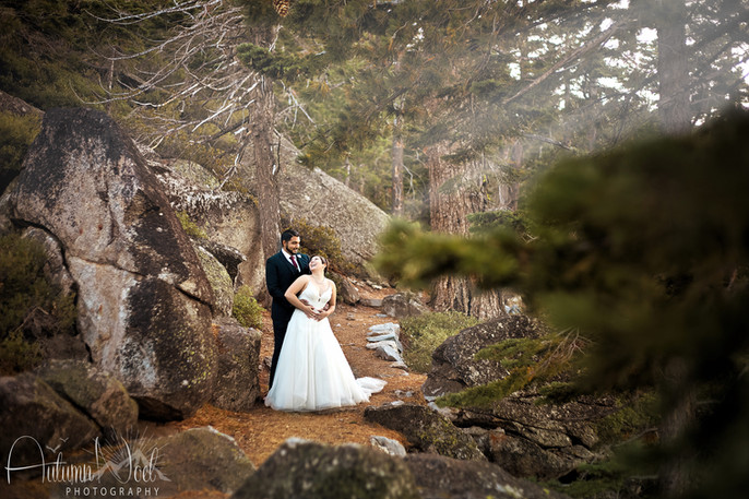 deep in the forest wedding photo