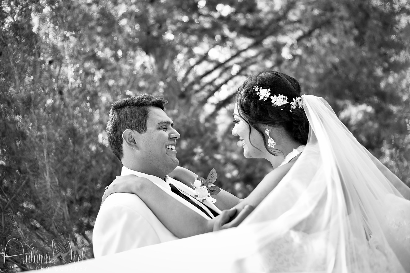 black and white veil photography