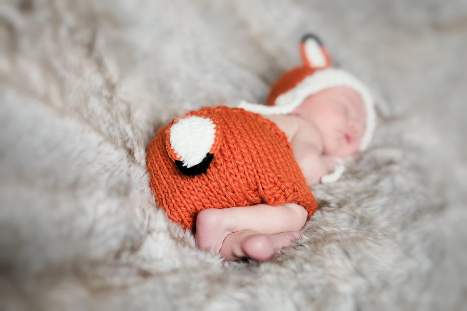 newbornphotographyfox-3.jpg