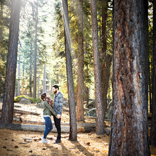 Lake Tahoe Forest engagement session