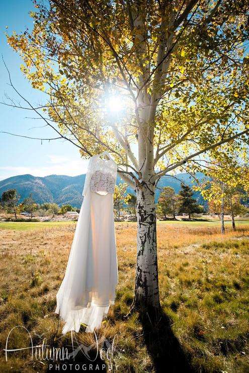 fall wedding dress genoa nevada