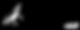 US Aerial Analytics Logo