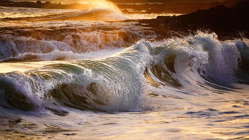 Laguna Wave.jpg
