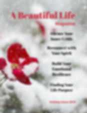 A Beautiful Life Holiday Issue.png