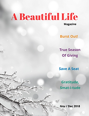 A Beautiful Life Nov _ Dec - Cover.png