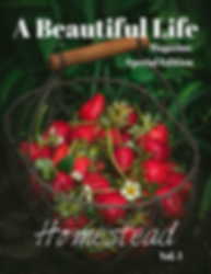 HomeStead - Cover (1).png