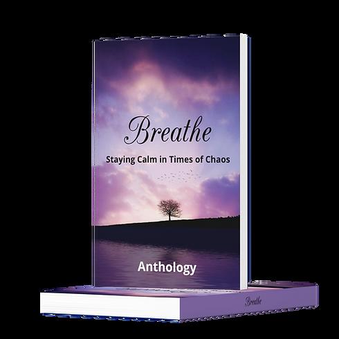 Breathe Mock up.png