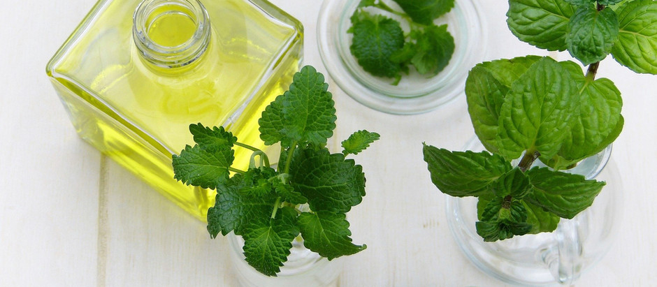 Why Everyone Should Have Peppermint Oil