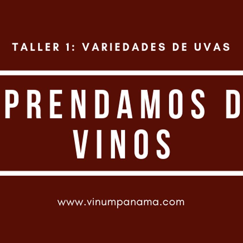 Taller 1: Variedades de Uva