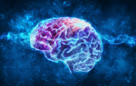 Taking Good Care of Your Prefrontal Cortex Part Two