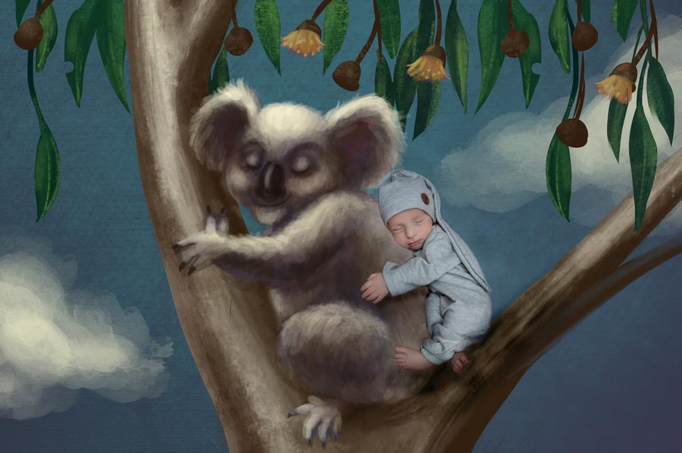 Koala_2yellow.jpg