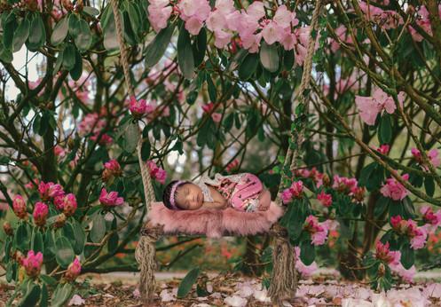 pink.blossom.swing-Edit.jpg