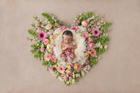 HeartGio.jpg