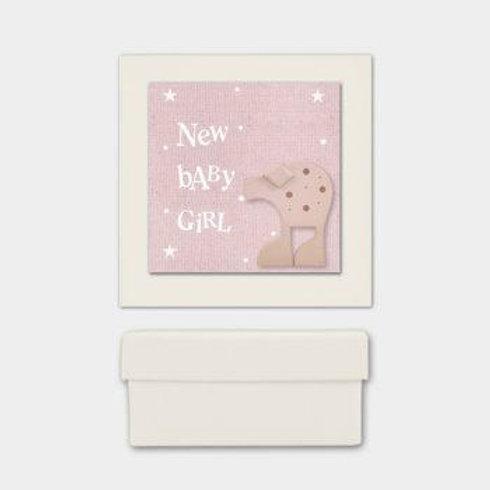 Animal box-New baby girl