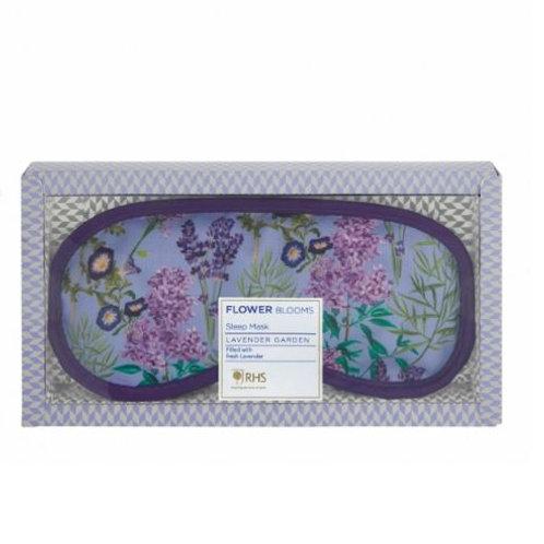 RHS Lavender Sleep Well