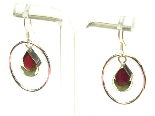 Sterling Silver Earrings - Rose - with Sterling Silver Oval Surround