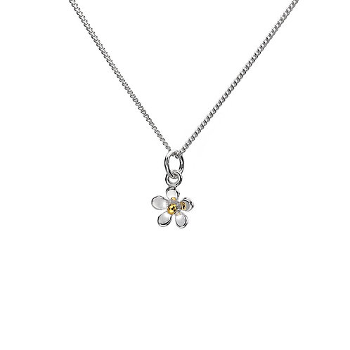Tiny Daisy Sterling Silver Pendant with Brass Plating Stamen/ Chain