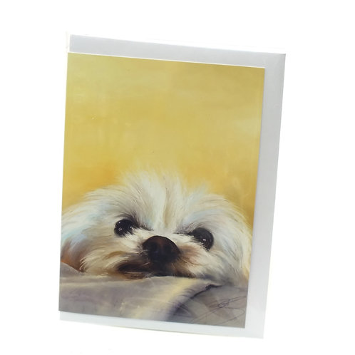 Bichon Frise - Greeting Card