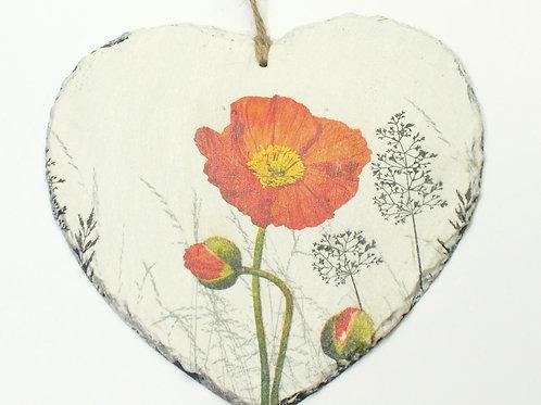 Red Poppy, Slate Heart