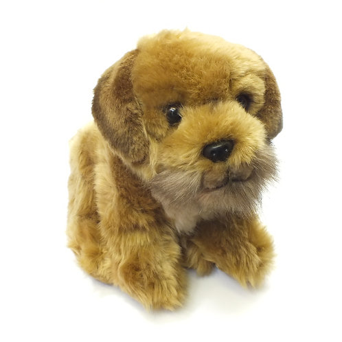 """Border Terrier 12"""" Soft Toy"""