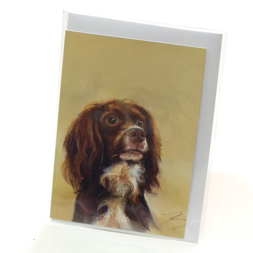 Sprocker Brown- Greeting Card