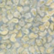 100 oysters.jpg