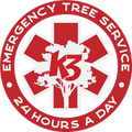 Emergency-Badge 1 (2).png