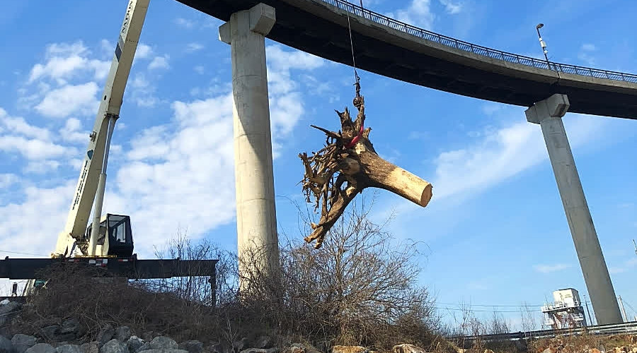 K3 Large Tree Crane Service