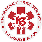 Emergency-Services-Button (1).png