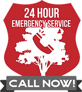 Emergency-Call-Now-Badge.png