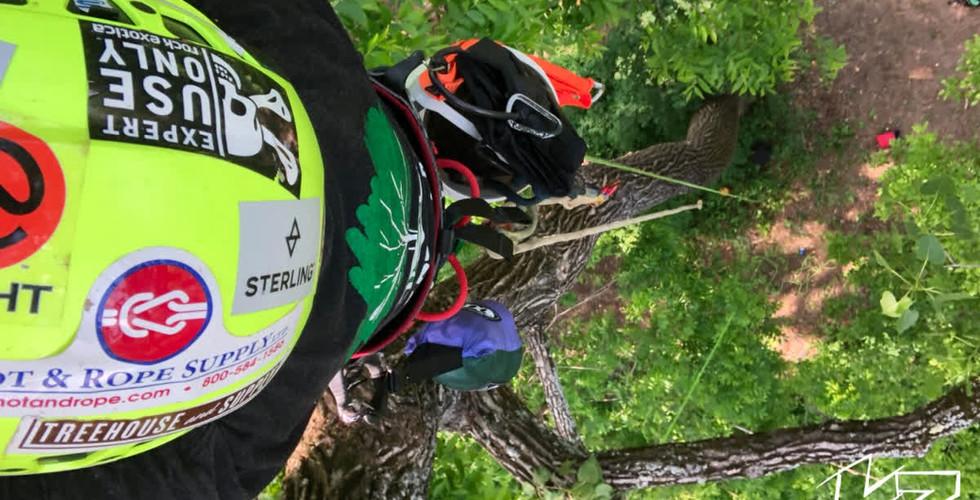 K3 Tree Climbing