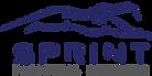 Sprint Financial Services