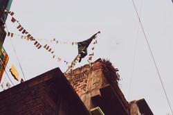 Kite-Fest_GFT_0005-sm.jpg