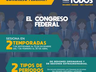 ¿Cómo funciona el congreso federal?