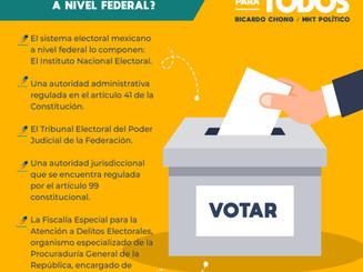 ¿Cómo está organizado el sistema electoral mexicano a nivel federal?