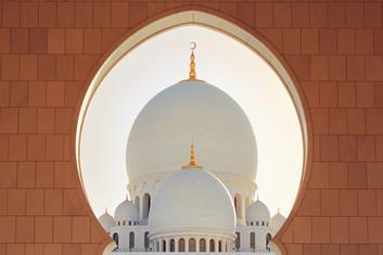 mosque-in-abu-dhabi-PRUERDJ.jpg