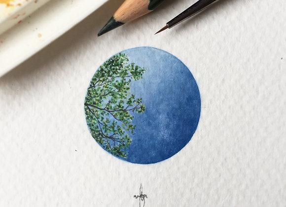 Earth & Heaven